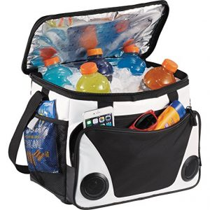 Arctic Zone Cooler Bag With Radio