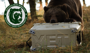 Bear Proof Roto Molded Coolers