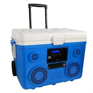 Cooler Radio Am/FM