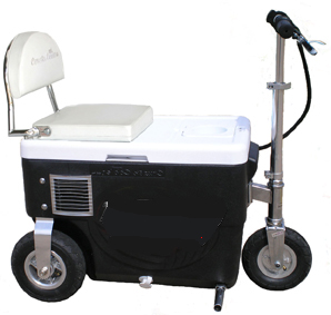 Cruzin Cooler 500 Watt
