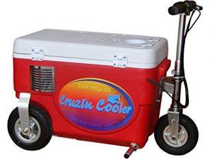 Cruzin Coolers