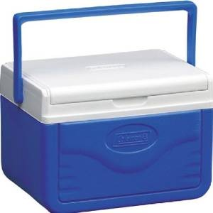 Choose The Best Personal Small Cooler Coolers On Sale