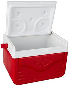 Best Small Personal Cooler