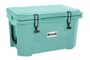 Sea foam green grizzly cooler