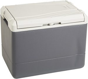 Electric Ice Chest by Coleman