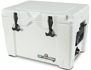 Sportsman 40Qt Closed