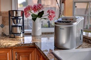Avalon Bay Portable Ice Maker In The Kitchen