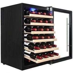 Thermoelectric Wine Refridgerator