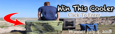 Win A Vibe Cooler