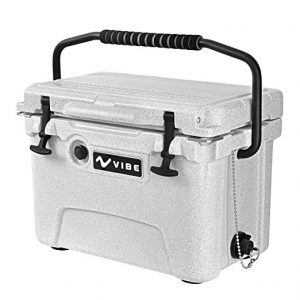 Cooler With Handle